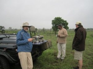 6 Safari Caffiene